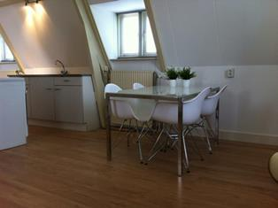 Housing_Wageningen-Studio-Penthouse-Loft