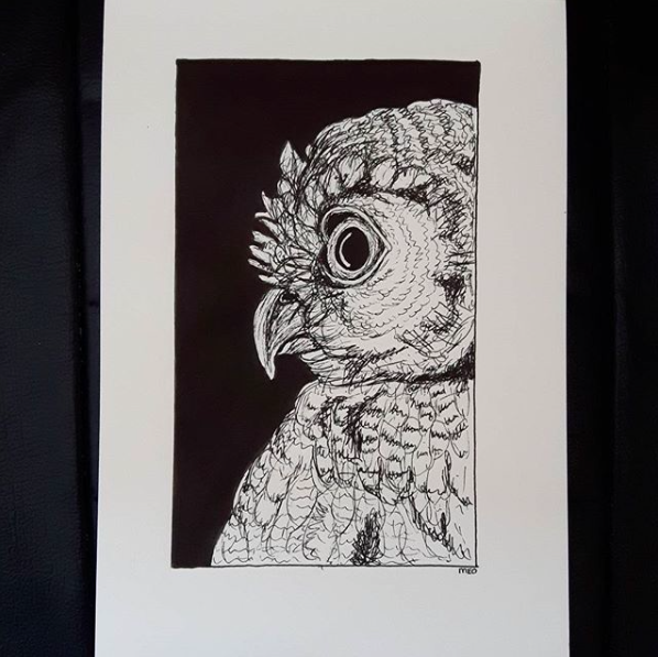 Ink art back and white Owl