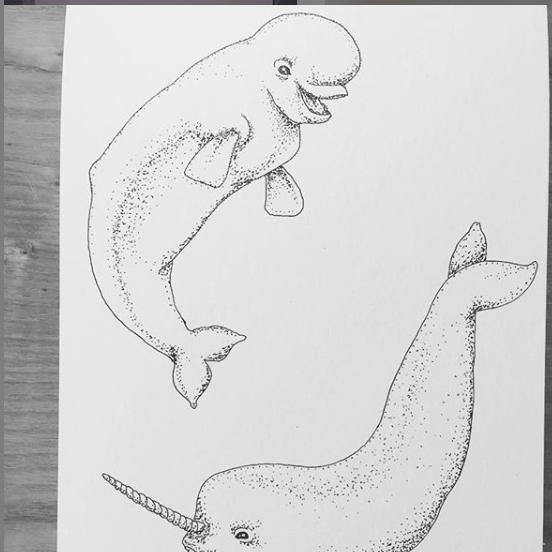 Ink art dolphins