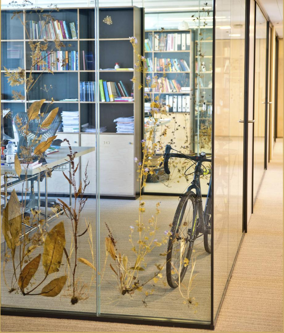 Erasmus University office partition wall glass with wild plants circular building